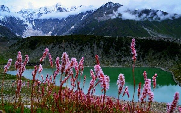 Earth Lake Lakes Pakistan Landscape Nature Mountain Flower Hill HD Wallpaper | Background Image