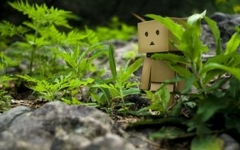 Diversen - Danbo Wallpapers and Backgrounds ID : 60138