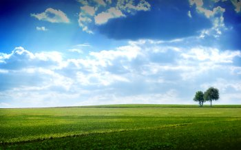 Earth - Field Wallpapers and Backgrounds ID : 60334