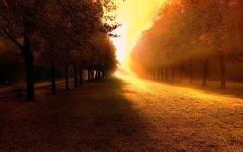 Earth - Autumn Wallpapers and Backgrounds ID : 64098