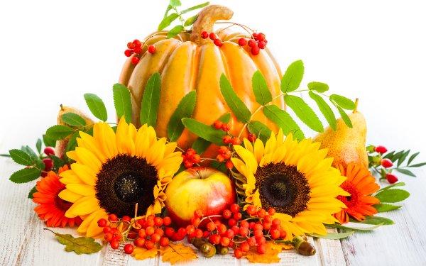 Food Still Life Fall Harvest Pumpkin Sunflower Fruit Apple Pear HD Wallpaper | Background Image