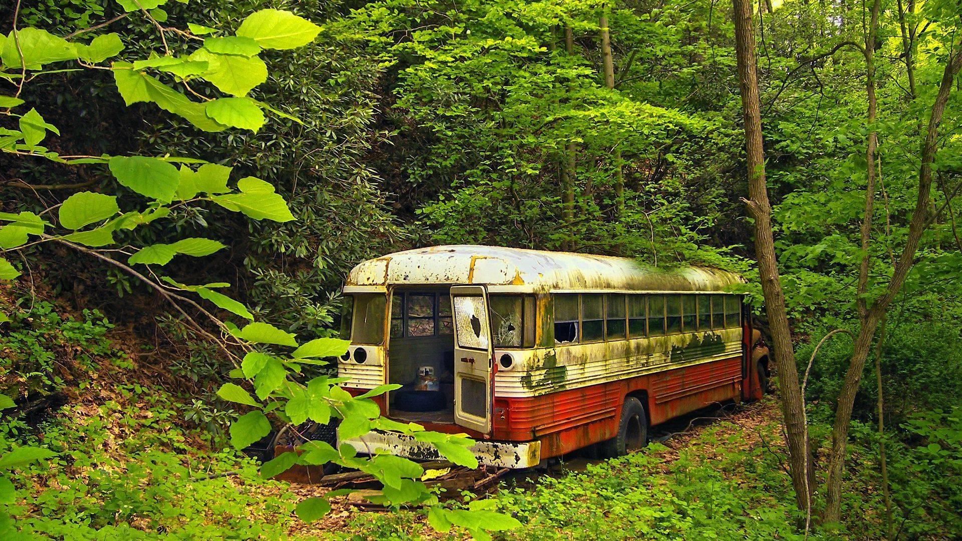 Fondos De Vehiculos: Autobus Fondos De Pantalla, Fondos De Escritorio