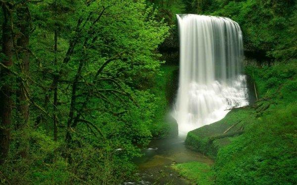Earth Waterfall Waterfalls USA Oregon Forest Moss Nature HD Wallpaper | Background Image