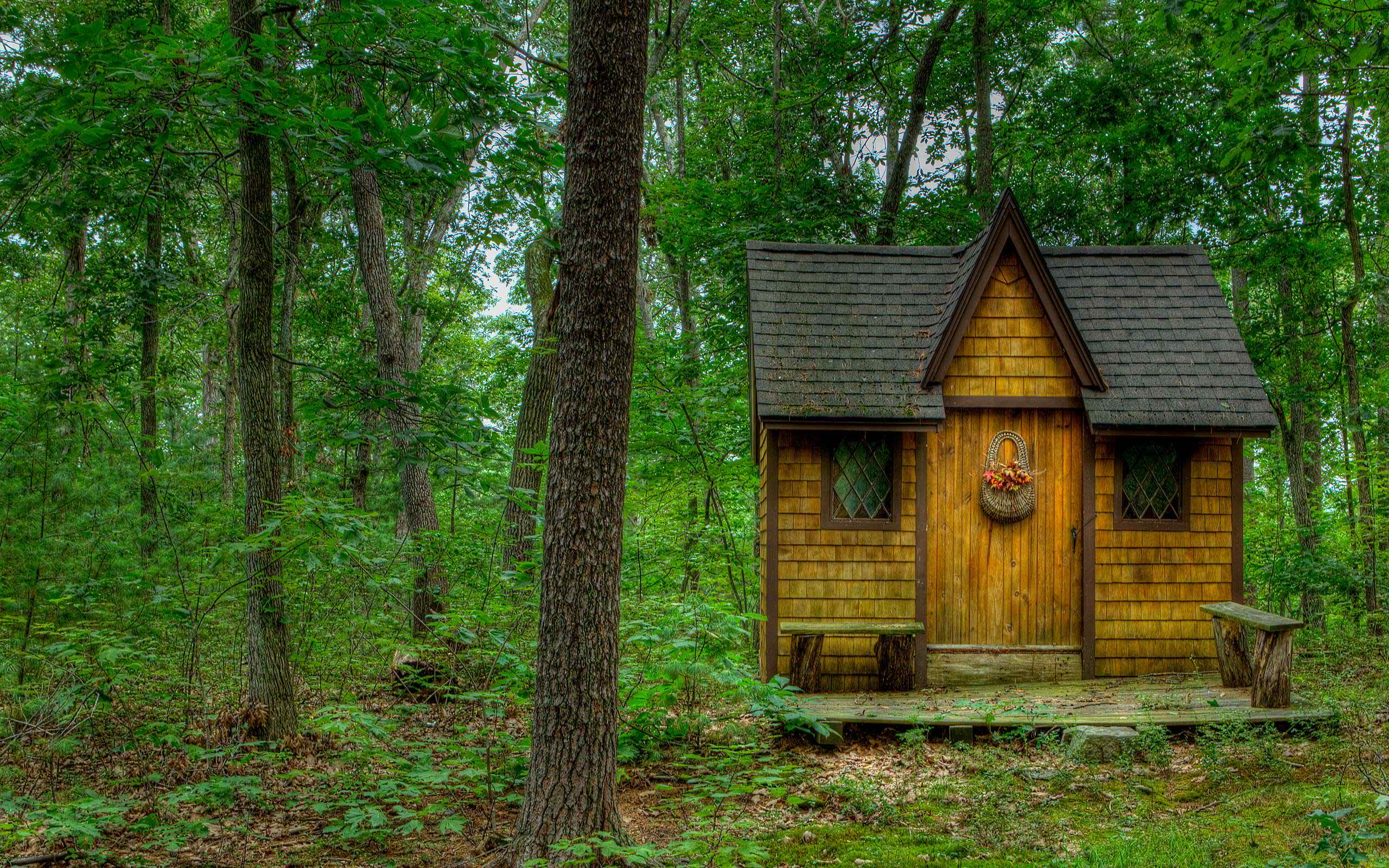 Tiny house in the forest full hd wallpaper and background for Wallpaper with houses on it