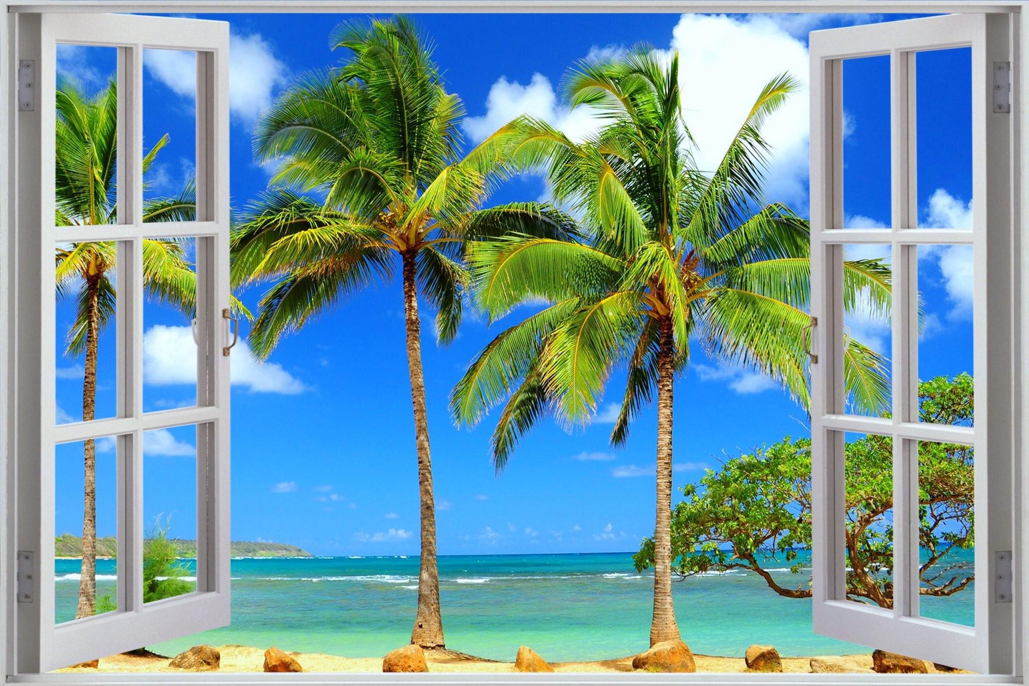 Window to Tropical Beach HD Wallpaper ...