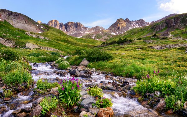 Earth Landscape USA Colorado Mountain Valley Stone Grass Flower Stream Nature HD Wallpaper | Background Image