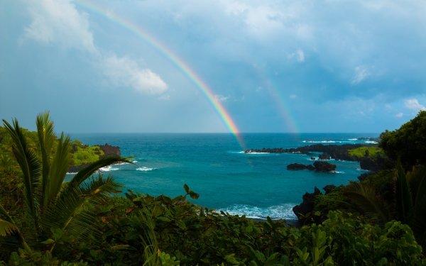 Earth Rainbow Ocean Hawaii Tropical Shrub Palm Tree Nature Horizon HD Wallpaper | Background Image