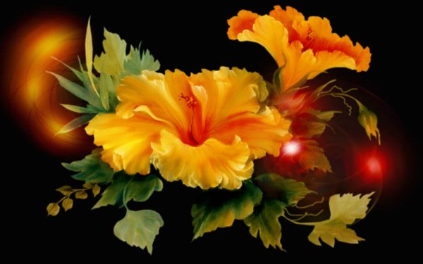 Artistic Flower Flowers Hibiscus Yellow Flower HD Wallpaper   Background Image