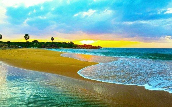 Earth Beach Ocean Sky Sunset Tropical Palm Tree Horizon Sand HD Wallpaper | Background Image