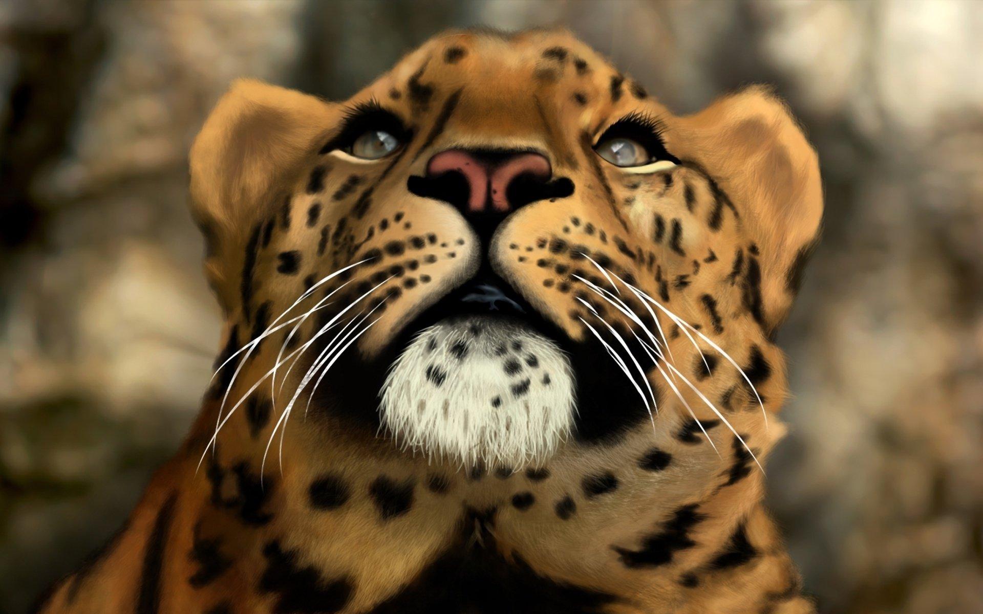 Hd wallpaper jaguar - Hd Wallpaper Background Id 690173 1920x1200 Animal Jaguar