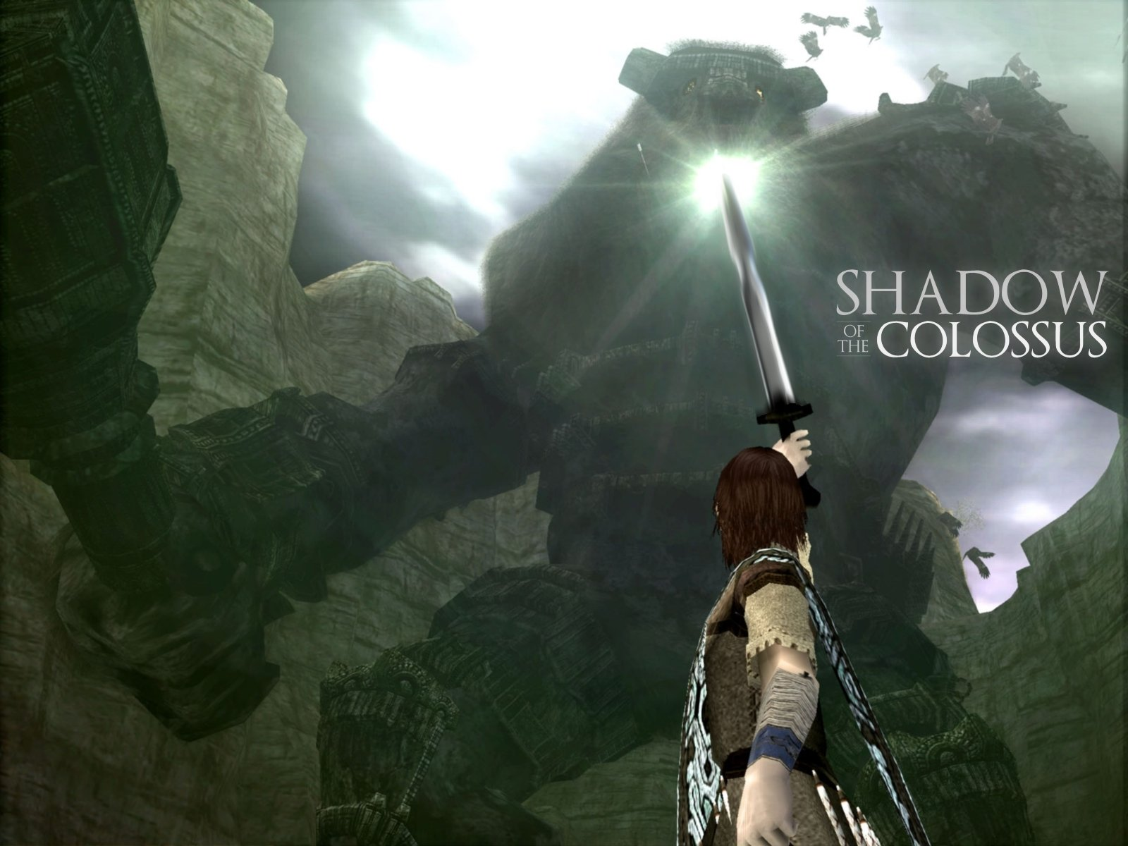 Video Game - Shadow Of The Colossus  Wallpaper