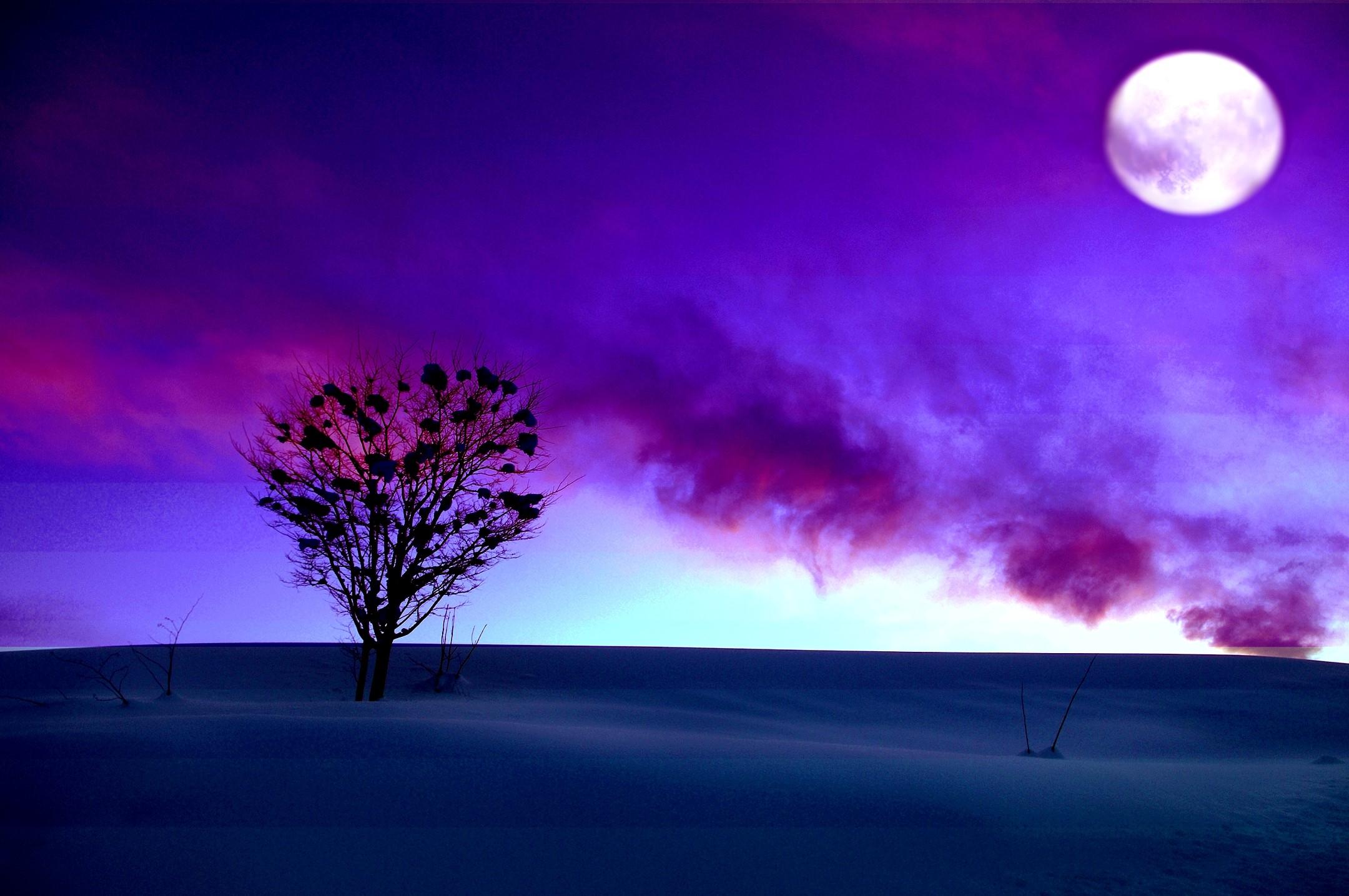 Full moon in purple winter sunset hd wallpaper - Purple moon wallpaper ...