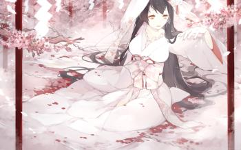 HD Wallpaper | Background ID:695691