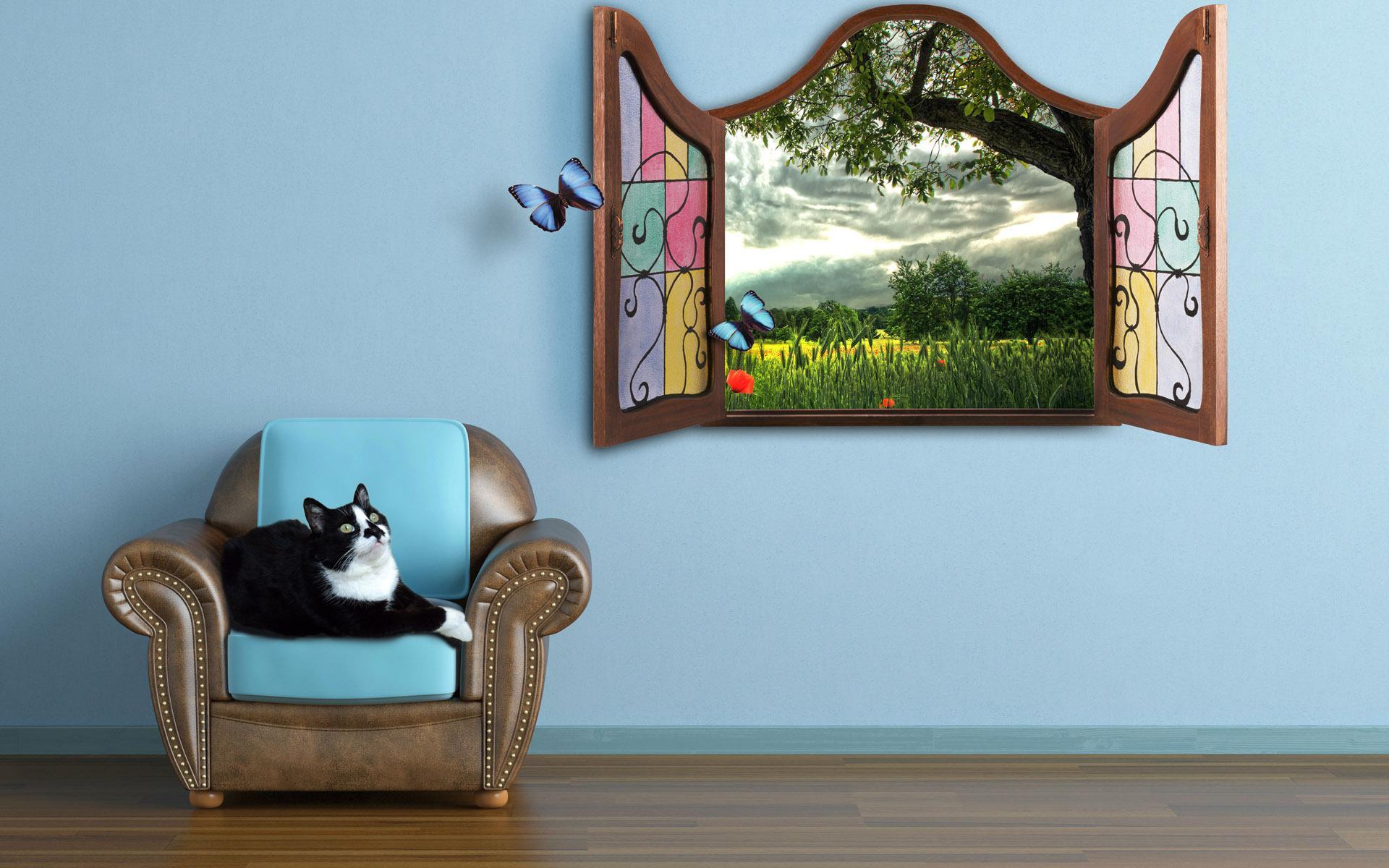 Best Wallpaper Cat Butterfly - 698981  2018_194758 .jpg