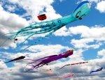 Preview Kites