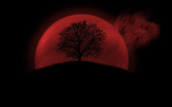 Artistic Moon Red Silhouette Tree Blood Moon HD Wallpaper | Background Image