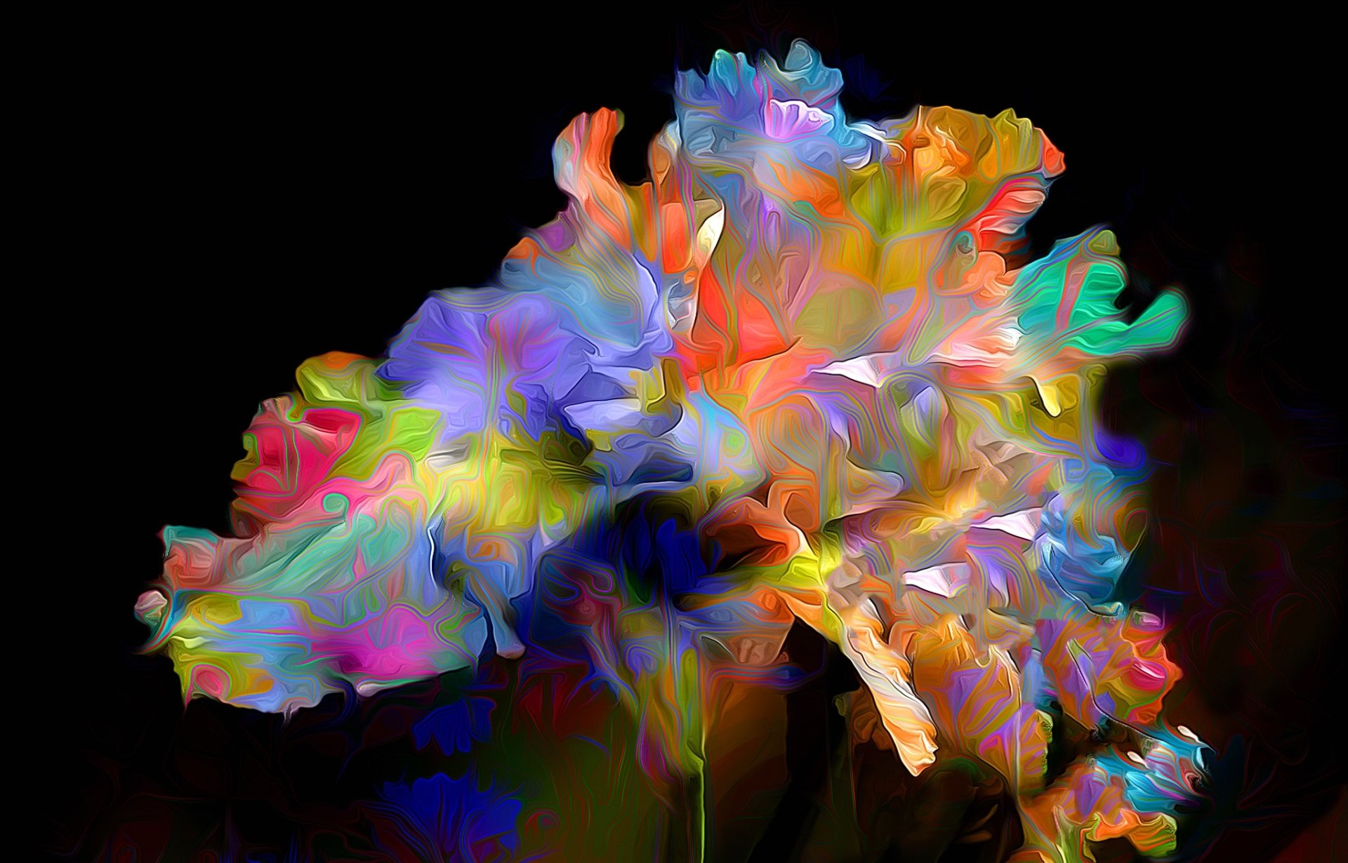 Abstract Flower Hd Wallpaper Background Image