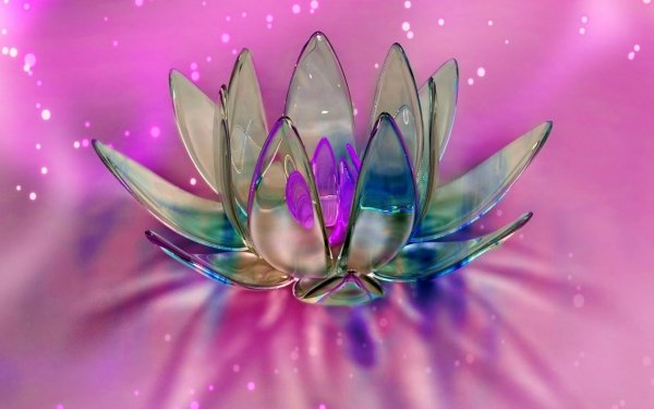 Artistic Flower Flowers Crystal Lotus HD Wallpaper | Background Image