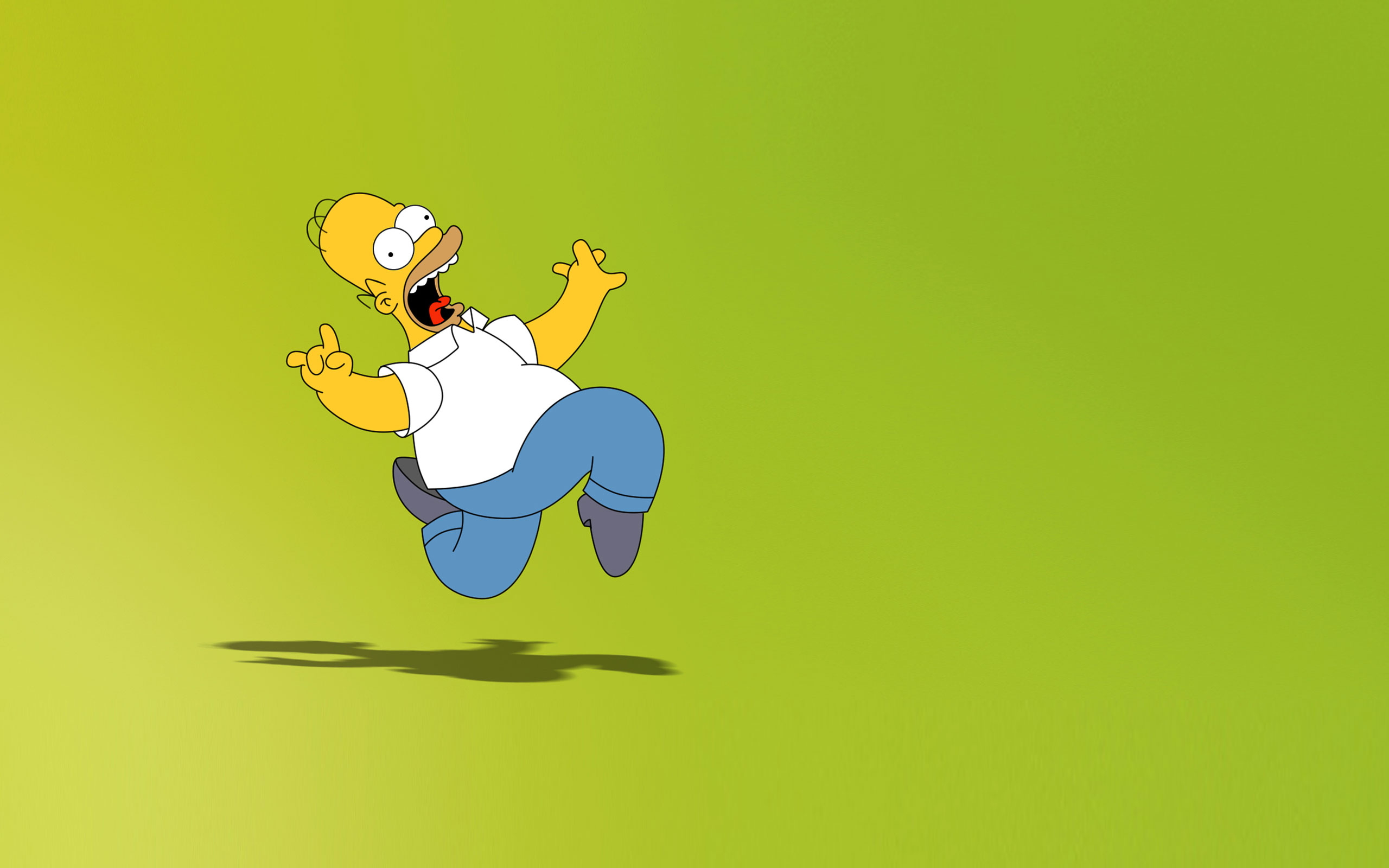 TV Show - The Simpsons  - Homer Simpson Wallpaper