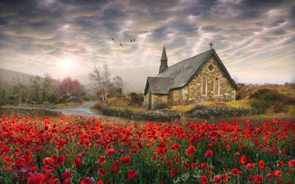 Religious Church Churches Painting Field Poppy Red Flower HD Wallpaper | Background Image