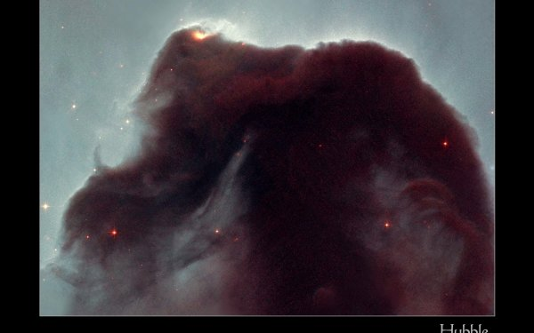 Sci Fi Nebula Horsehead Nebula Space HD Wallpaper   Background Image
