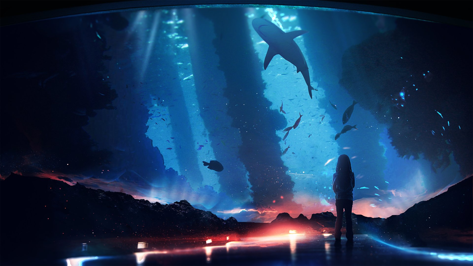 Fantasy - Child  Aquarium Shark Wallpaper