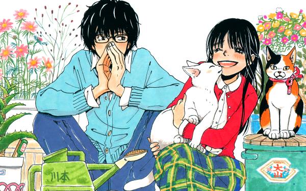 Anime March Comes in Like a Lion Akari Kawamoto Hinata Kawamoto Rei Kiriyama Sangatsu no Lion HD Wallpaper | Background Image