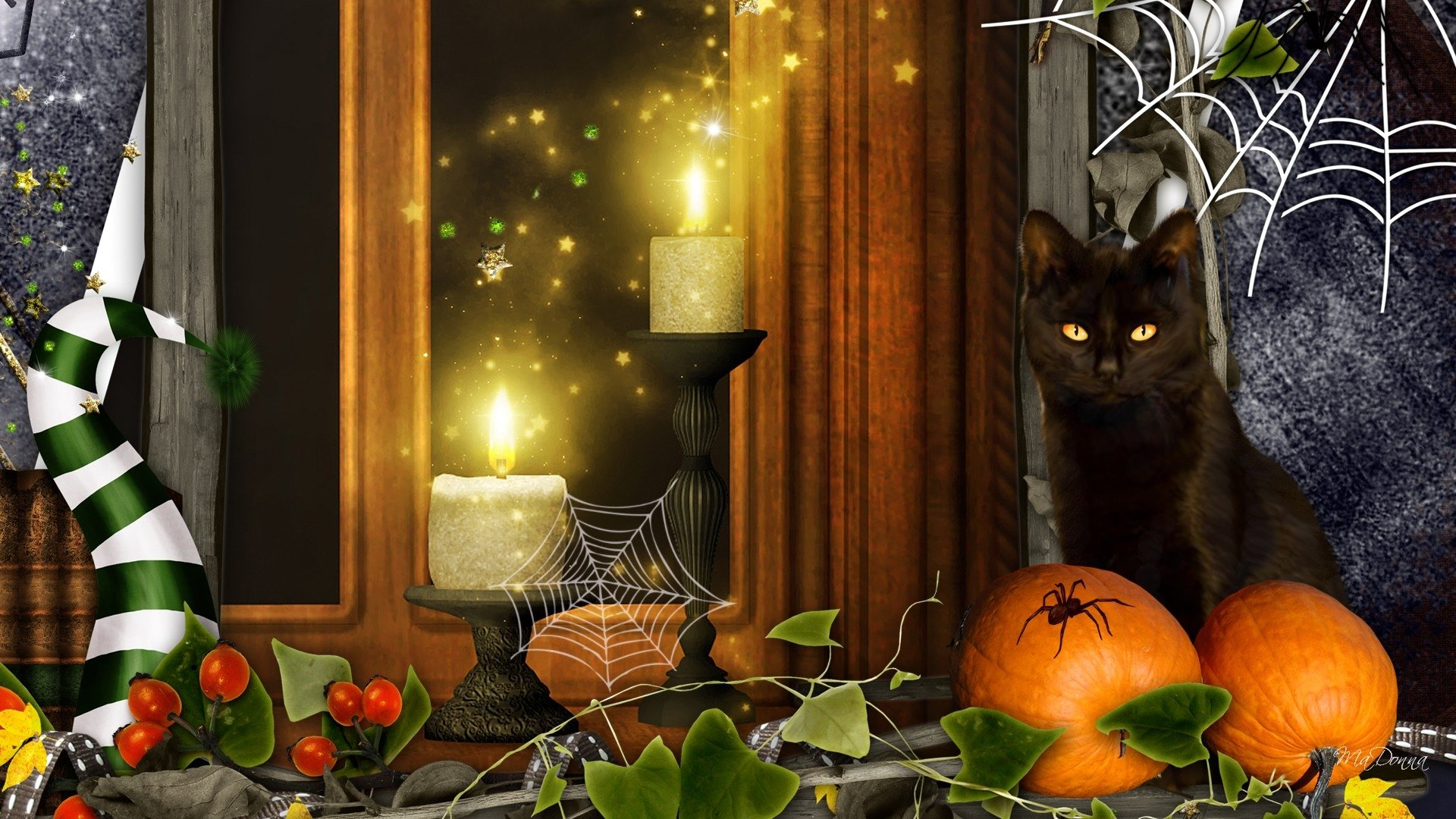 Holiday - Halloween  Holiday Collage Cat Pumpkin Candle Spider Web Wallpaper