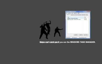 Humor - Ninja Wallpapers and Backgrounds ID : 73916