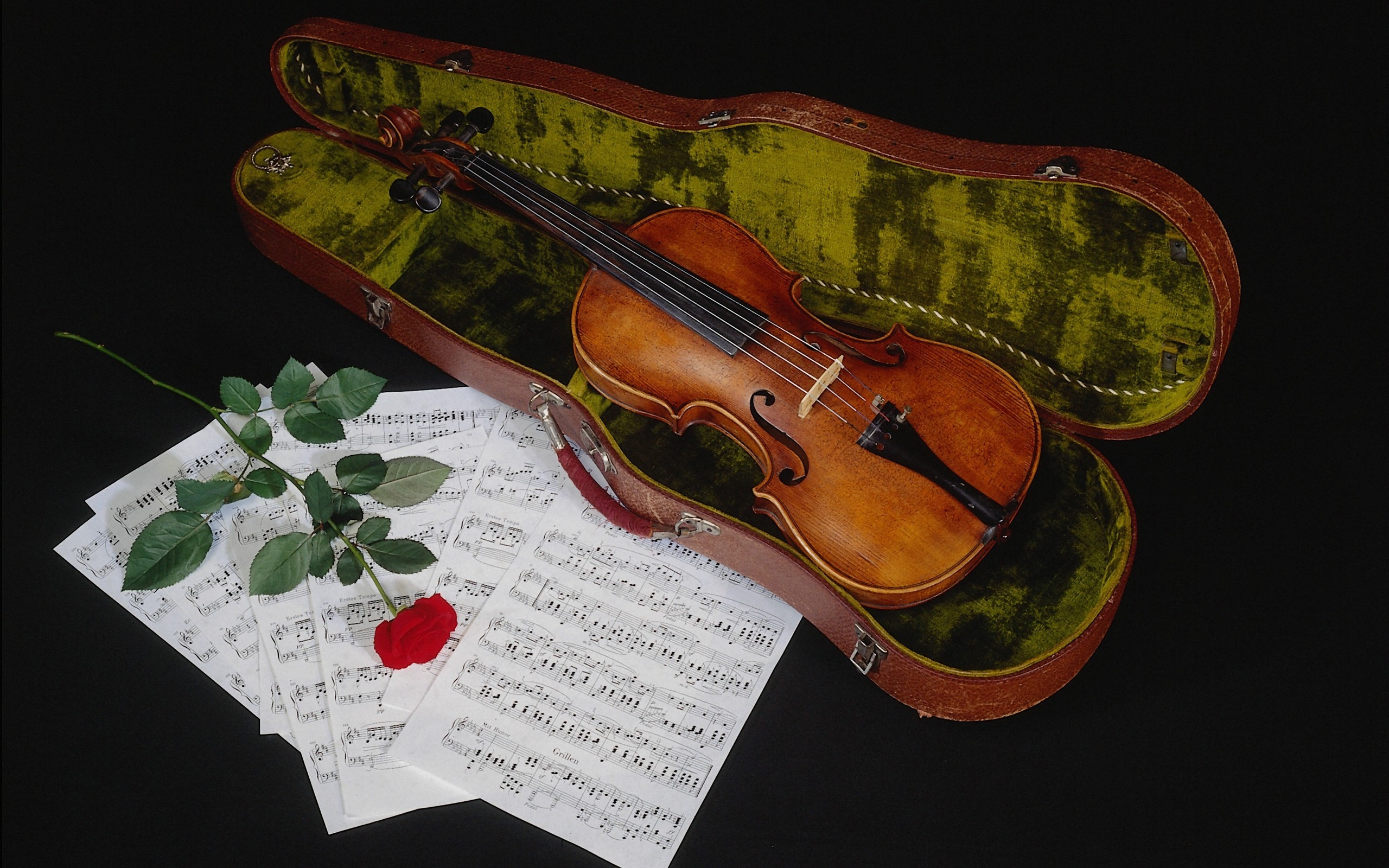 Violin With Sheet Music And Red Rose HD Wallpaper