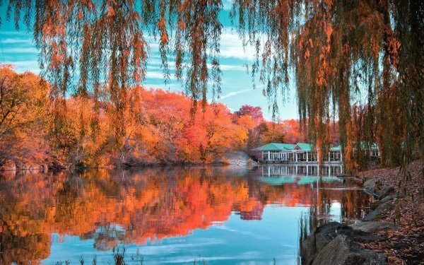 Man Made Central Park Fall Foliage Tree Pond Reflection HD Wallpaper   Background Image
