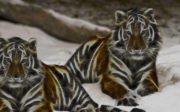 Animales Artístico Tigre Fondo de pantalla HD | Fondo de Escritorio
