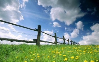 Man Made - Fence Wallpapers and Backgrounds ID : 75028