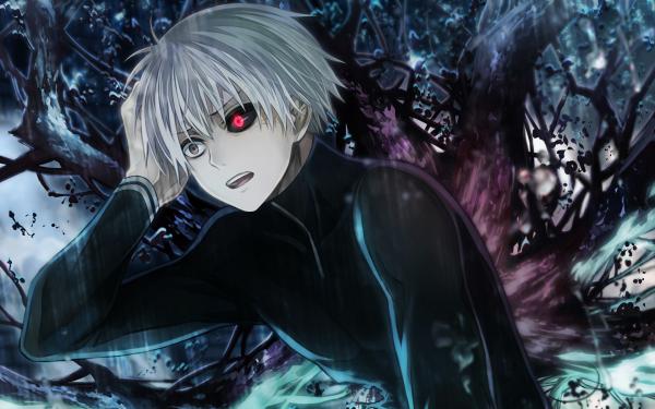 Anime Tokyo Ghoul Ken Kaneki White Hair Red Eyes Grey Eyes Heterochromia Kagune HD Wallpaper | Background Image