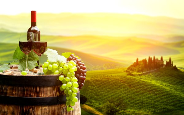 Food Wine Grapes Fruit Vineyard Landscape Barrel Glass HD Wallpaper | Background Image