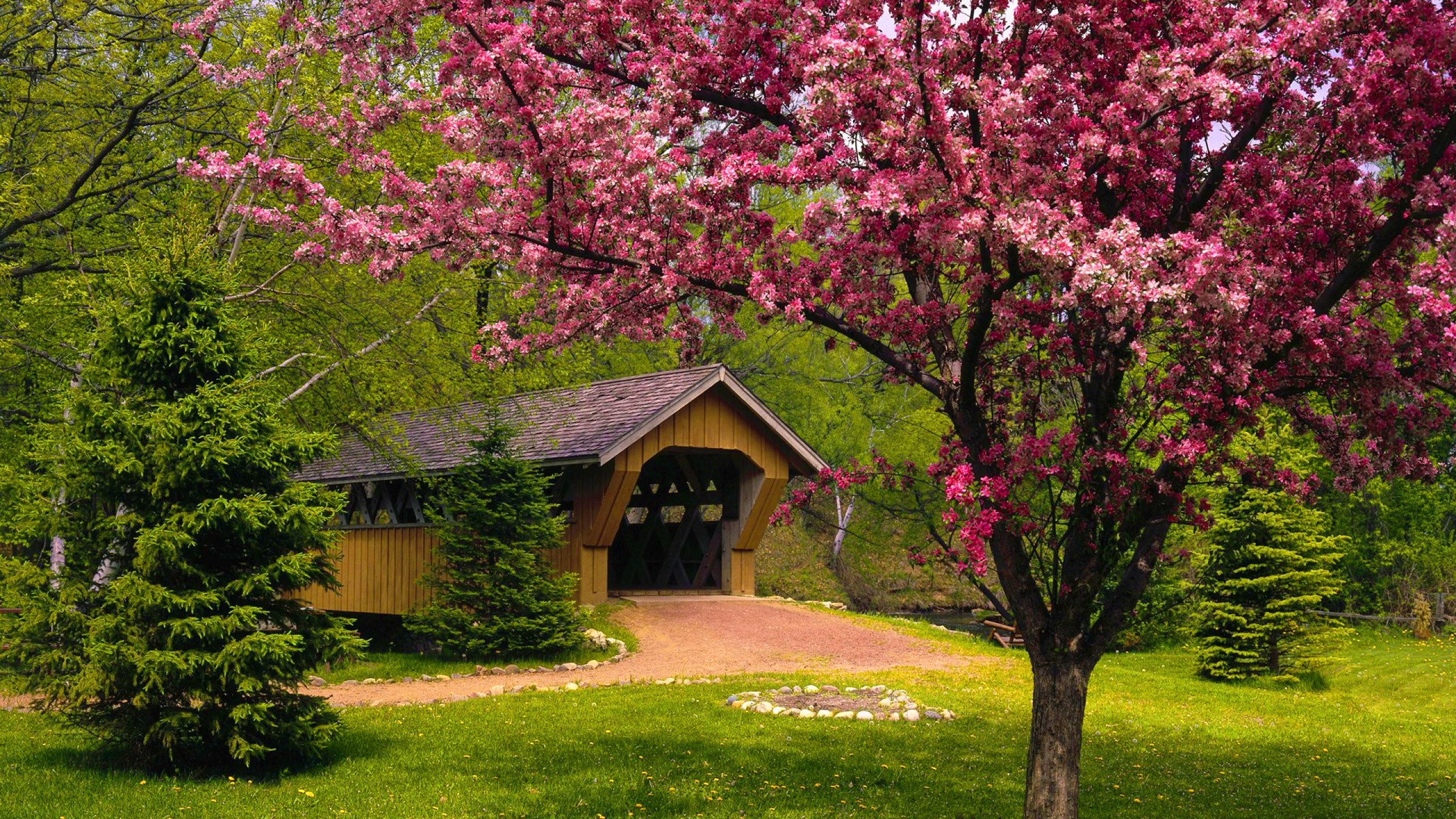 covered bridge in springtime full hd wallpaper and