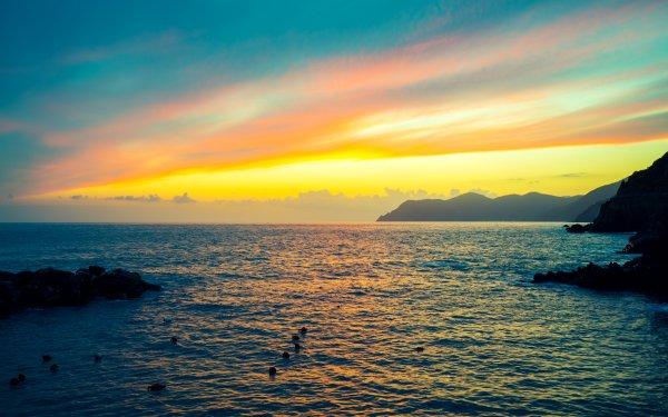 Earth Sunrise Sunset Ocean Sea Bird Horizon HD Wallpaper | Background Image