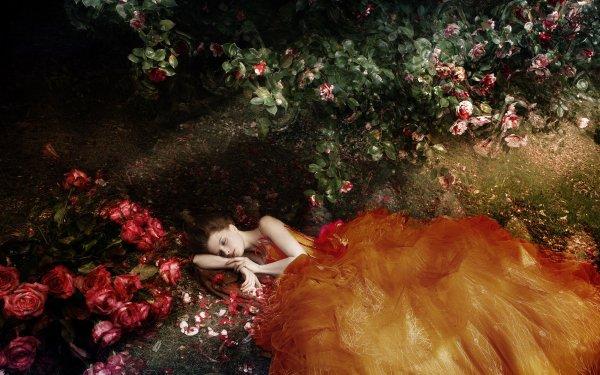 Women Mood Lying Down Flower Rose Rose Bush Orange Dress HD Wallpaper | Background Image