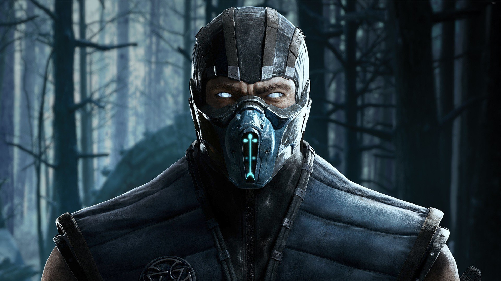 Sub Zero HD Wallpaper