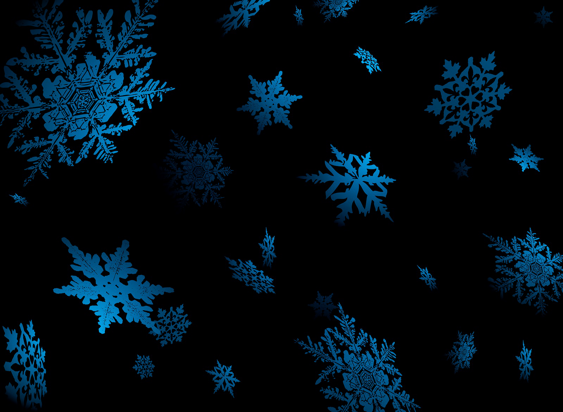 blue snowflakes hd wallpaper background image