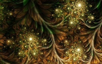 Pattern - Fractal Wallpapers and Backgrounds ID : 78216