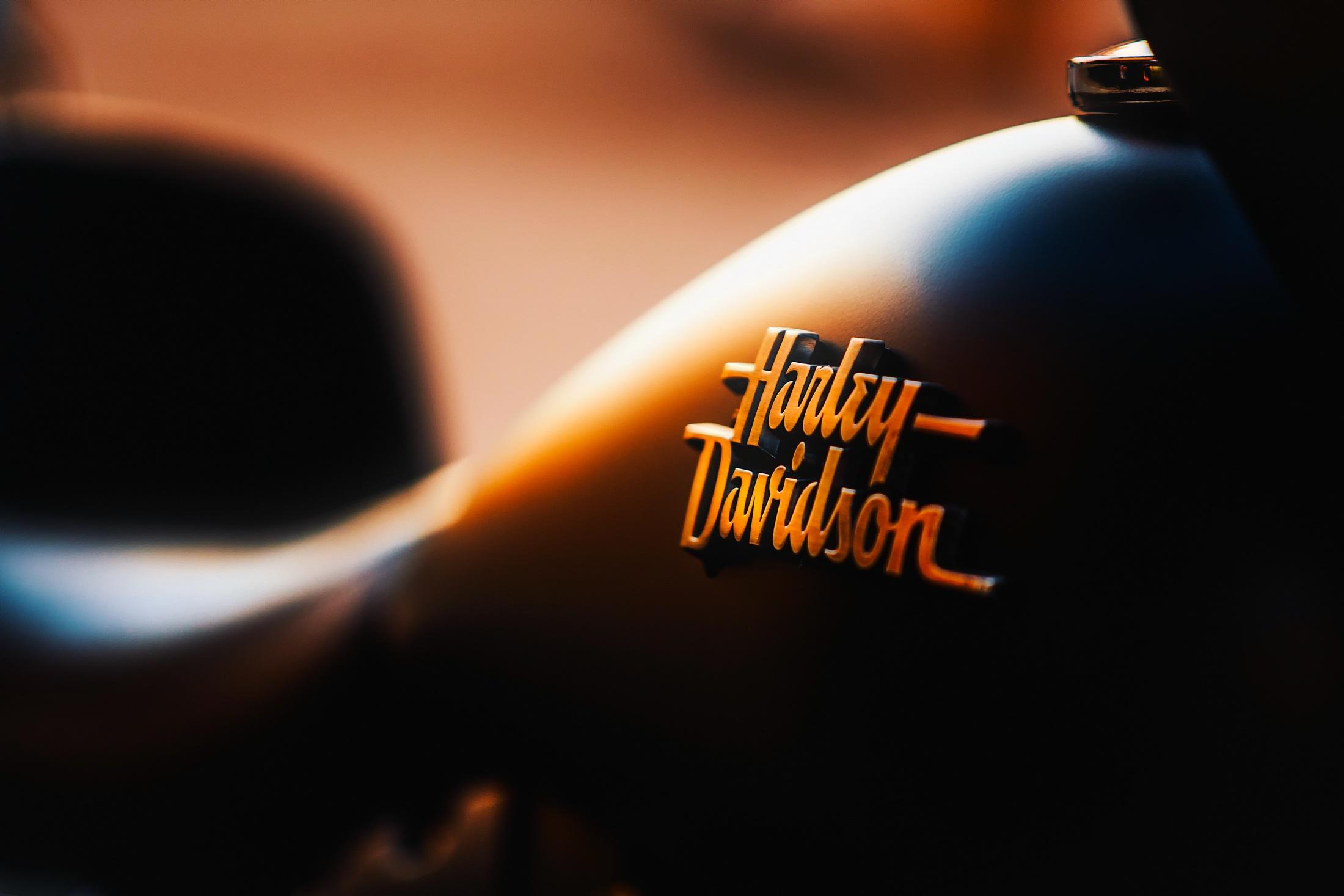 Close Up Of A Harley Davidson Badge Fondo De Pantalla Hd