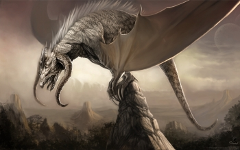 Fantasy - Drachen Wallpapers and Backgrounds ID : 78308
