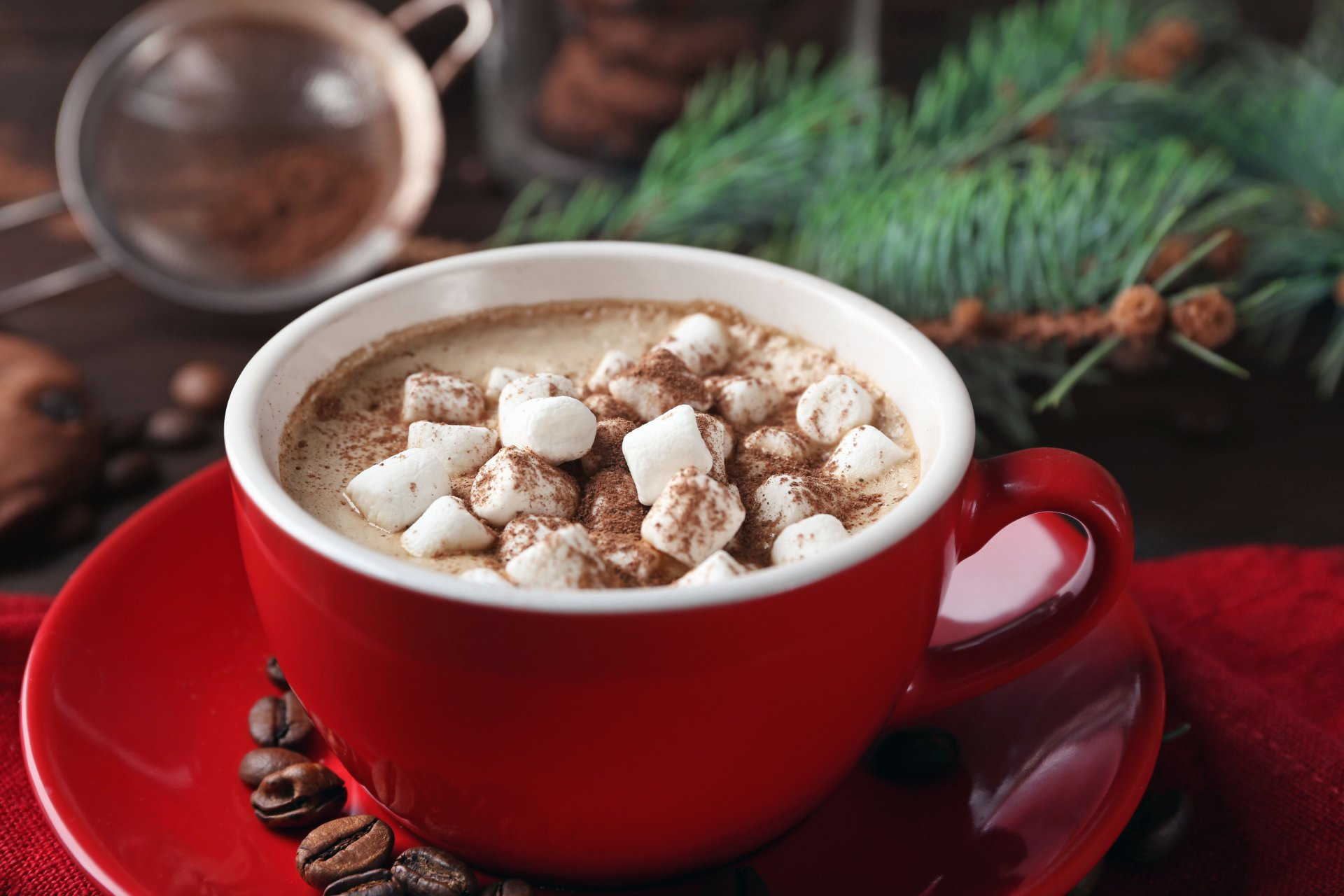 Food - Hot Chocolate  Cup Coffee Beans Marshmallow Wallpaper