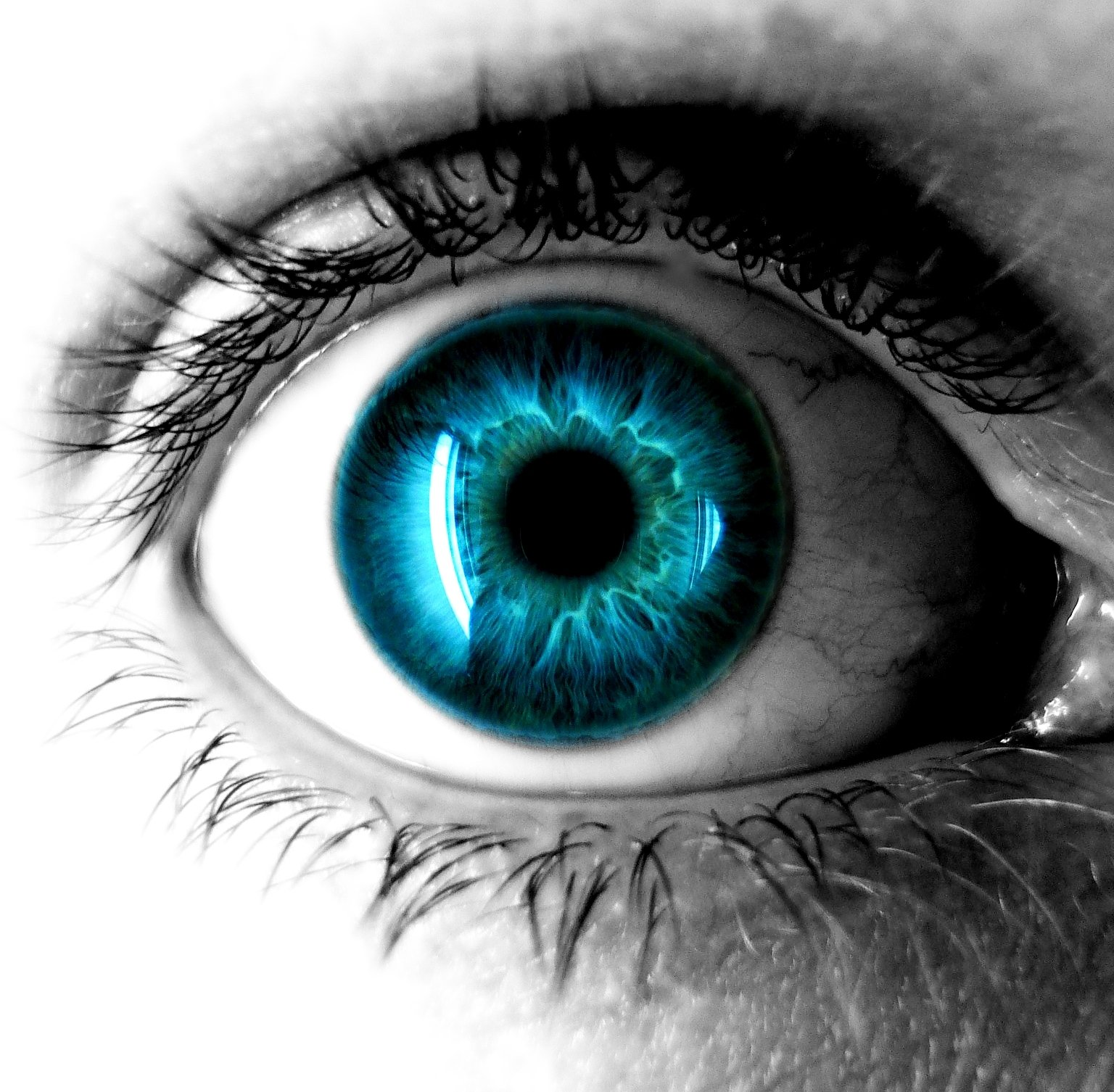 Eye Wallpaper And Background Image