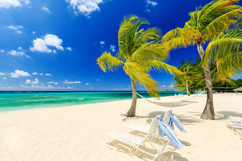 photography   beach earth tropical ocean sea turquoise palm tree chair wind horizon hammock wallpaper windy day on tropical beach 5k retina ultra hd wallpaper and      rh   wall alphacoders