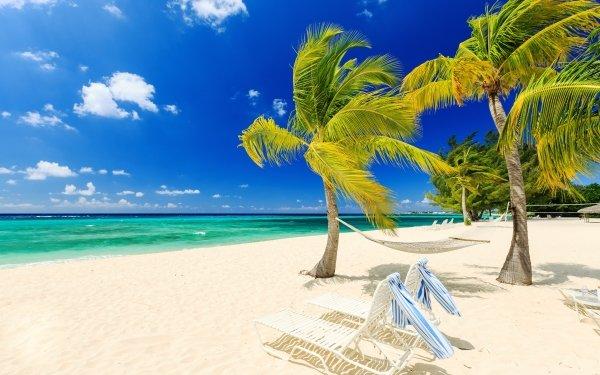 Photography Beach Tropical Ocean Sea Palm Tree Wind Hammock Chair Horizon HD Wallpaper   Background Image