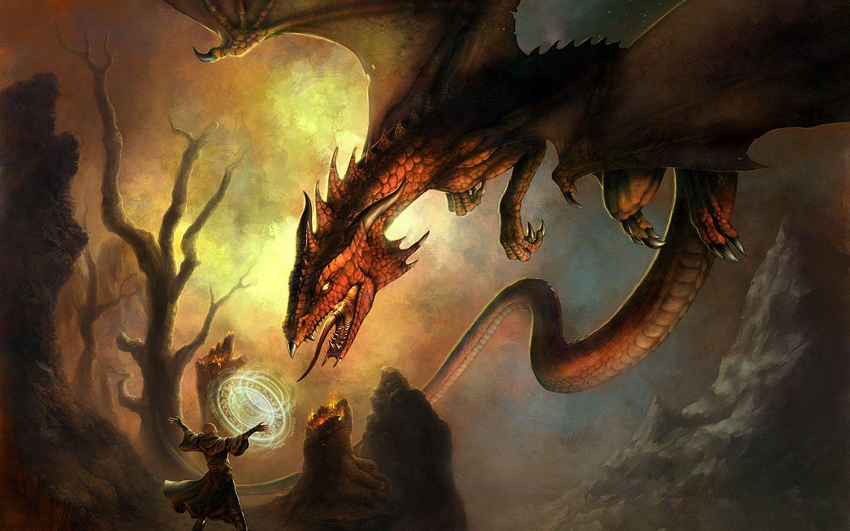 奇幻 - 巫师  龙 战争 壁纸