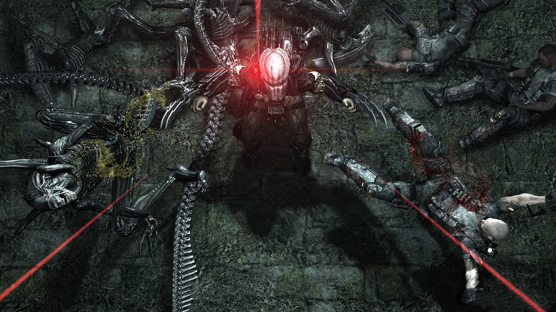 Aliens vs predator full hd wallpaper and background image video game aliens vs predator alien predator battle wallpaper voltagebd Choice Image