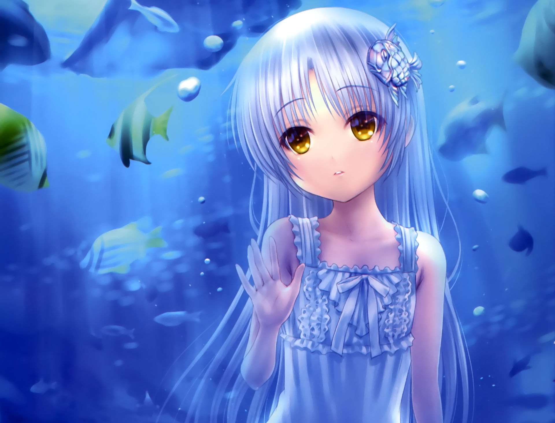 Wallpapers ID:841897